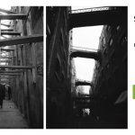 Simbiosis – Muestra de fotografias- sala Fucac
