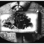 Fotógrafa de lo que es. Entrevista a Carla Zurdo