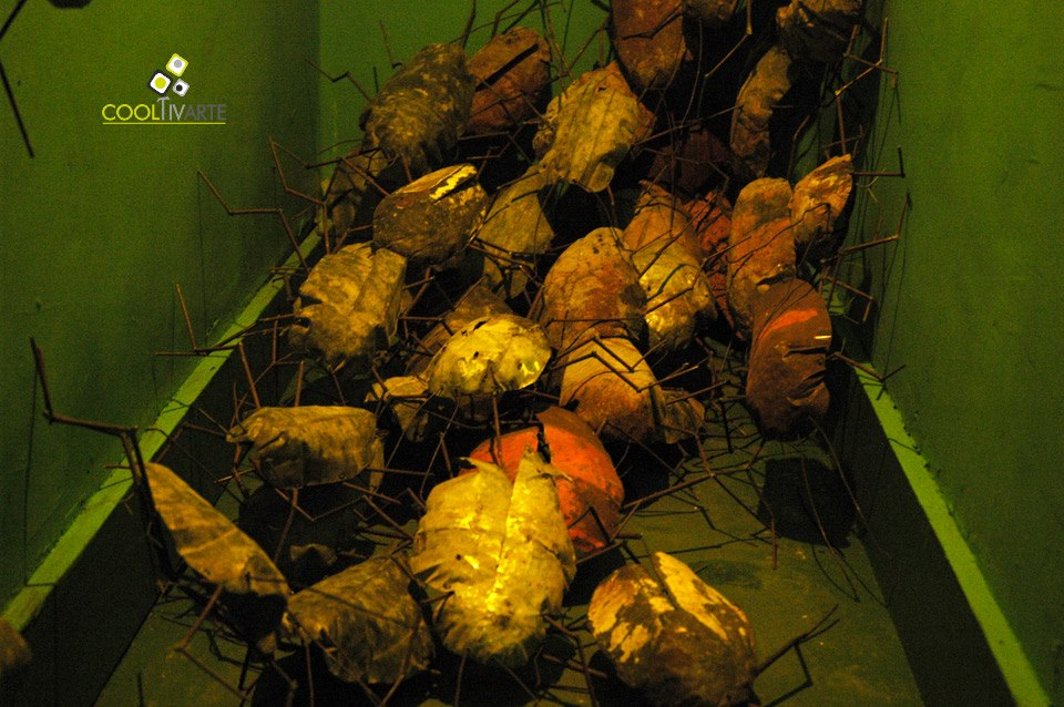 """imagen - """"Gregorios"""" Elian Stolarsky - metal cocroach/ cucarachas de metal soldadas - Ce-SUBTE - Agosto 2012 © Federico Meneses"""