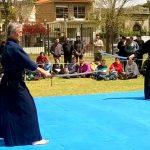 Festival en el jardín japonés – El rincón del sol naciente