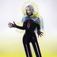 30- Björk - Vulnicura
