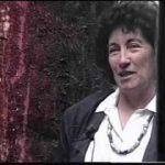 Lacy Duarte en el monitor plástico: 1994/2006
