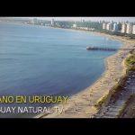 VERANO EN URUGUAY