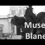 Verticalidad / Diego Masi / Museo Blanes / 2016