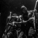 Larga vida, entrevista Enzo Broglia, bajista de ReyToro