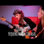 Guanaco – Pequeño Motor con Alas // Tape Sessions