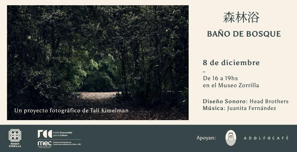 Los invitamos a asistir al cierre del proyecto Baño de Bosque de Tali Kimelman Photography en el Museo Zorrilla.