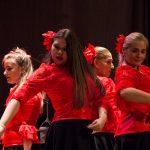 Flamenco en Salto