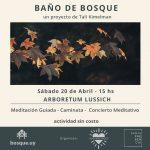 Baño de Bosque – 20 de abril de 2019 – Arboretum Lussich