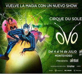 Cirque Du Soleil OVO – Montevideo 2019