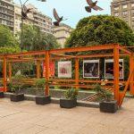 Bases del Llamado del 49º Premio Montevideo de Artes Visuales