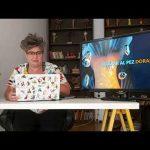 El viaje de la idea – Jimena Márquez – Sala Emilia