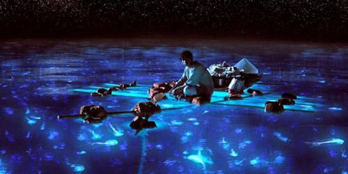 Life-of-Pi Imagen: http://ojosabiertos.otroscines.com/