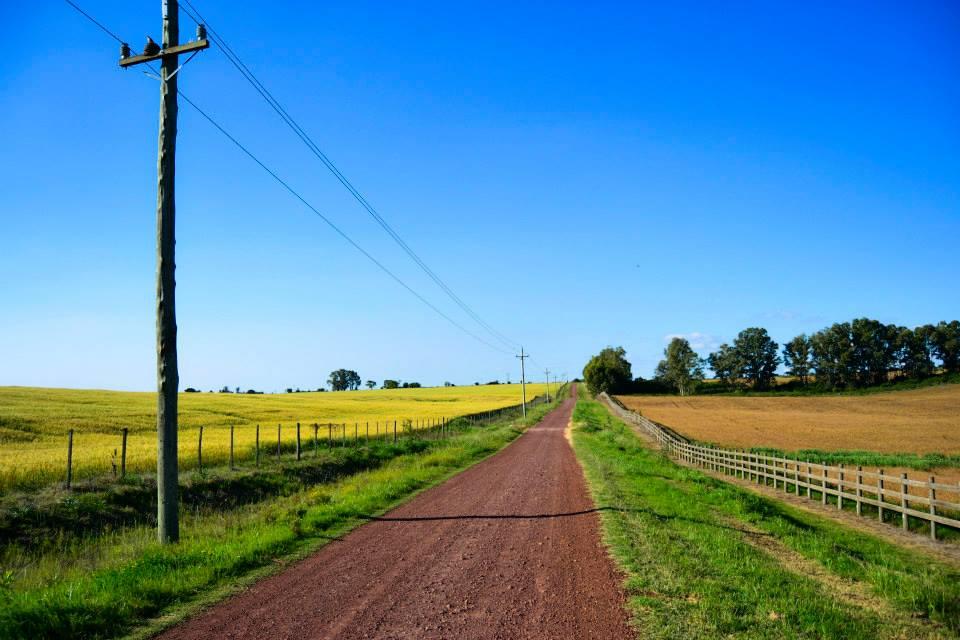 imagen - carretera interior del Uruguay -foto: Daniela Hernández