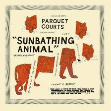 3- Parquet Courts - Sunbathing Animal