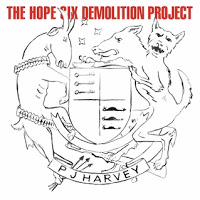 18- PJ Harvey - The Hope Six Demolition Project