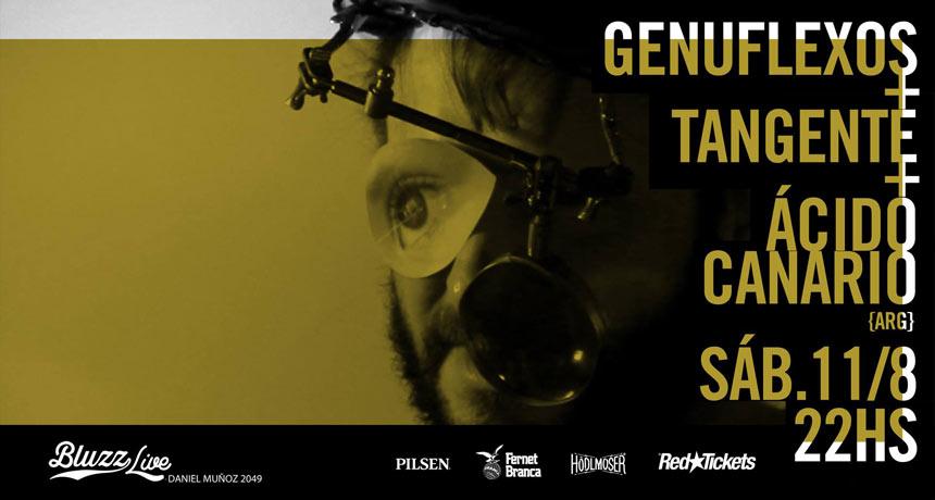 Tres bandas, dos orillas, un concierto - Genuflexos + Tangente + Ácido Canario