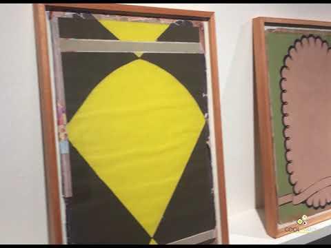 Fancis Alÿs (BE–MX) Mounir Fatmi (MA–FR) Fernando López Lage (UY) Diego Velazco (UY) Curaduría: Aline Herrnstadt (UY) En el marco de la temporada 35 del Espacio de Arte Contemporáneo, que festeja sus primeros diez años de funcionamiento, se presenta la muestra Precaria que reúne artistas uruguayos y extranjeros en torno a la noción de precariedad.