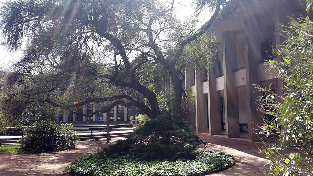 facultad-de-arquitectura diseño y urbanismo de uruguay - foto federico meneses