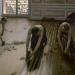 Los acuchilladores de Parqué