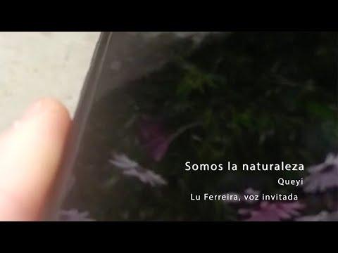 Somos la naturaleza. Queyi. Voz invitada, Lu Ferreira Piano y voz, Queyi Guitarra y bajo, Juan P. Lazo Batería, Beatriz García