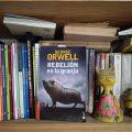 Rebelión de la granja de George Orwell - foto Federico Meneses www.cooltivarte.com