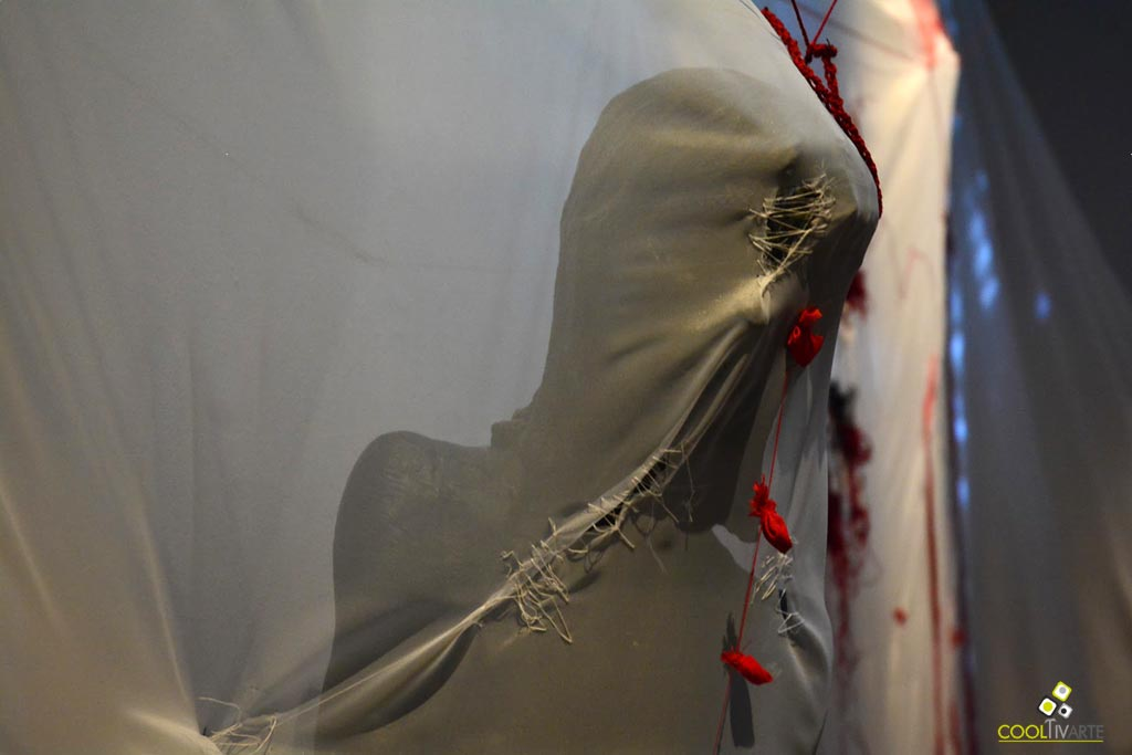 territorio infiltrado - obra - Alejandro González Soca - Museo Blanes - Montevideo - marzo 2019 - Foto Federico Meneses